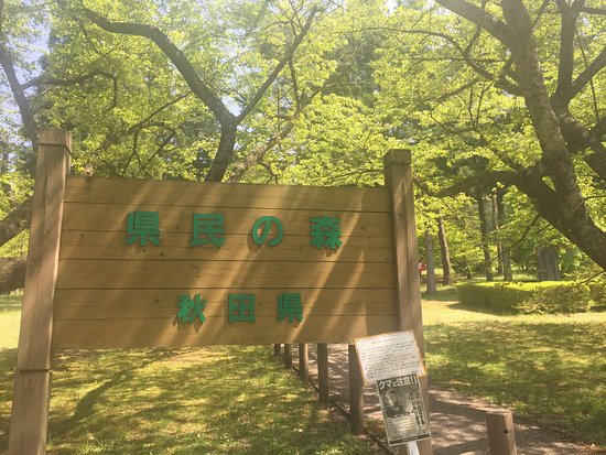 Kenmin no Mori : photo1.jpg