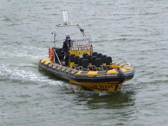 Menai Bridge, UK: Jason bringing it into dock, ready to pick us up
