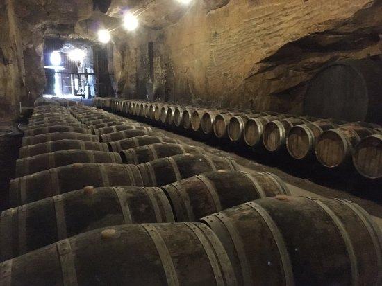 Chinon (เทศบาลชีนอน), ฝรั่งเศส: Tonneaux de vin