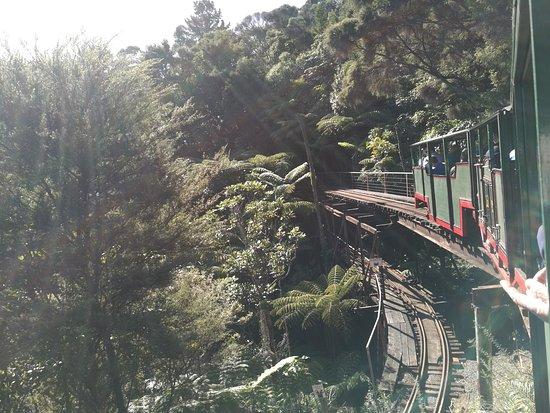 Coromandel, New Zealand: IMG_20170506_133949_large.jpg