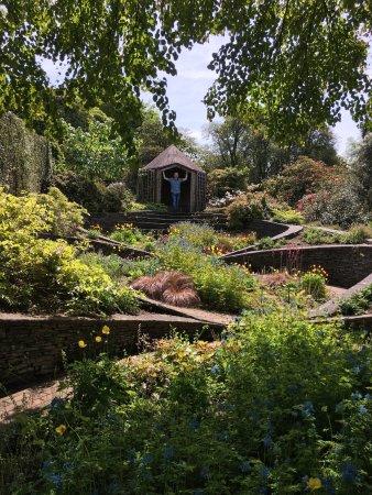 The Garden House: photo7.jpg