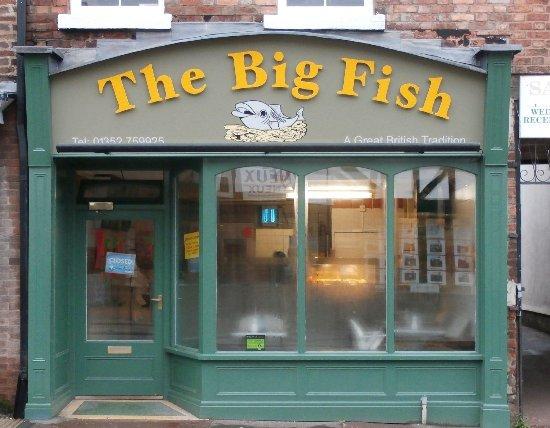 Big fish mold