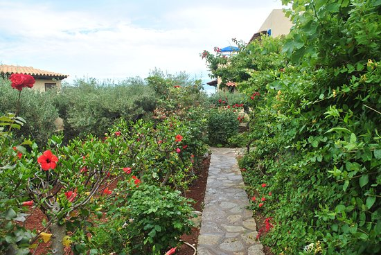Elounda Heights Apartments and Studios : Path through the garden