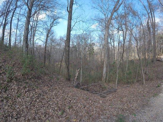 Woodville, MS : photo7.jpg