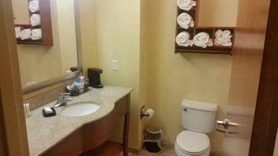 Typical comfortable, clean and well-appointed all-in-one Hampton Inn bathroom