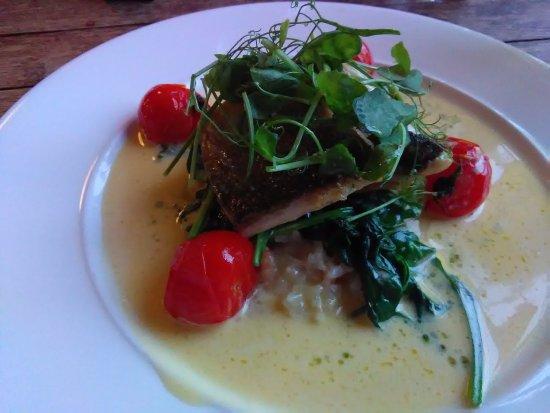 Bampton, UK: Delicious sea bass at dinner