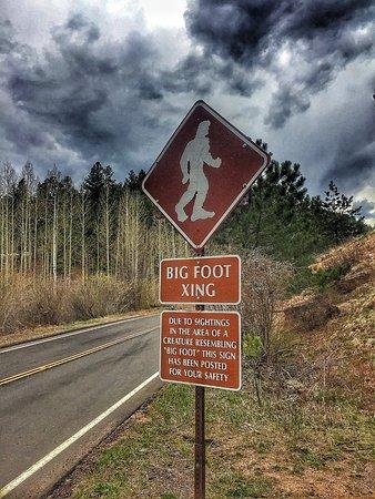Cascade, Colorado: photo2.jpg