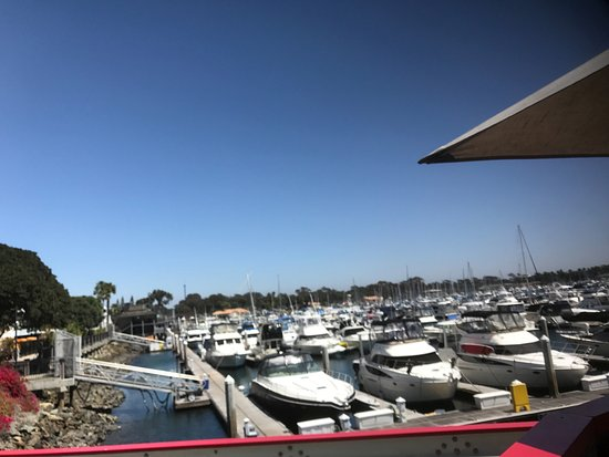 Red Marlin: Patio View