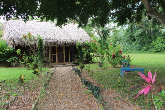 Bocawina Rainforest Lodge & Adventures: Garden View Suite