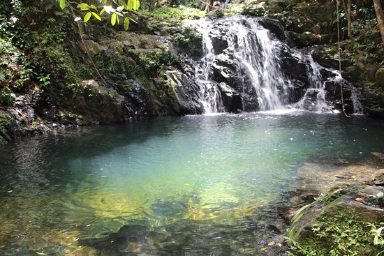 Bocawina Rainforest Lodge & Adventures: Part of Antelope Falls