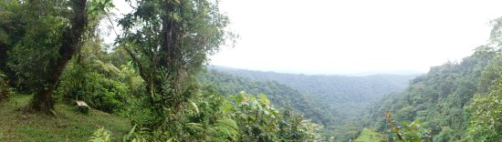Guapiles, คอสตาริกา: The View on your doorstep through the Reserve to the National Park