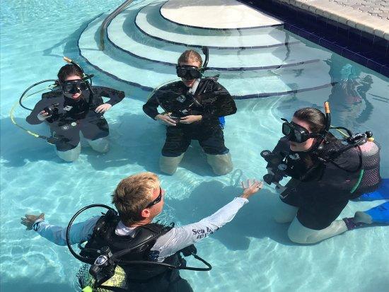 Sea Dwellers Dive Center: photo2.jpg