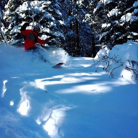 Fresh Kimberley powder 2 days after snow fall. If you know where to go there is powder for days!