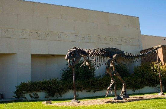 โบซแมน, มอนแทนา: This is the Museum of The Rockies in Bozeman, Montana.
