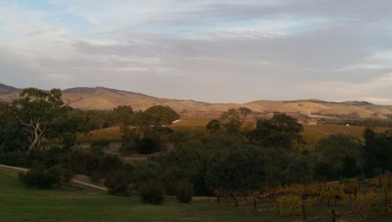 Rowland Flat, Australia: Room view overlooking the Jacobs Creek vineyards