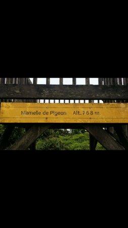 Bouillante, Guadeloupe: 2017-05-22-16-25-44_large.jpg