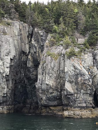 Mount Desert Island: Sheer rock walls are a common site in Acadia National Park.