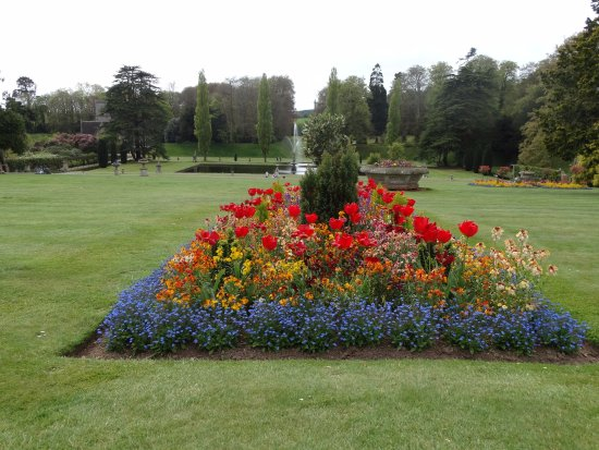 This is Bicton Park Gardens Devon England the main garden area