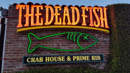 The dead fish restaurant in crocket ca picture of the for Dead fish restaurant