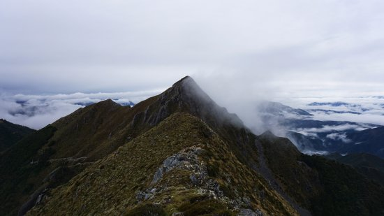Westport, Nieuw-Zeeland: Day 2 hiking over the ridges to Ghost Lake Hut.