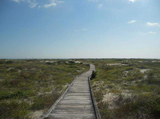 Фотография Little Talbot Island State Park