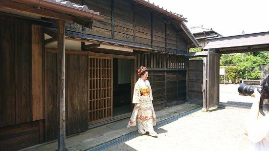 Katori, Япония: DSC_0156_large.jpg