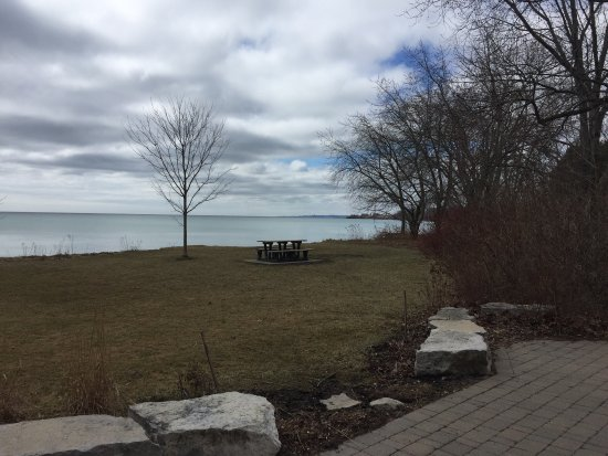 Ajax waterfront is kept natural and beautiful even in a rainy cold winter day