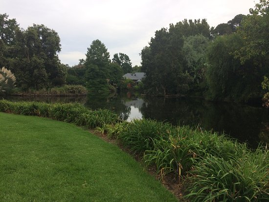 Beautiful gardens picture of adelaide botanic garden for Adelaide gardens