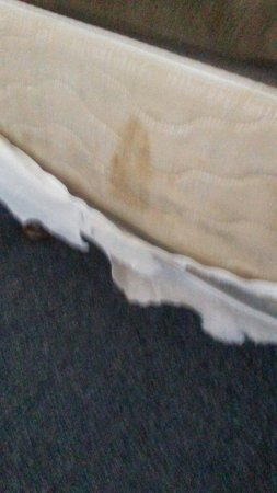 Travelers Beach Inn: Stains at side of mattress