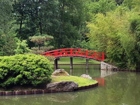 Genial Memphis Botanic Garden   Japanese Garden