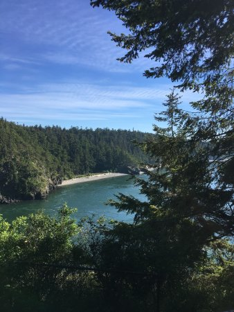 Oak Harbor, WA: Amazing views! Definitely a must see on your travels to the island!