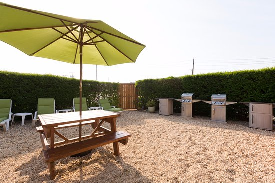 The Ocean Resort Inn : Courtyard