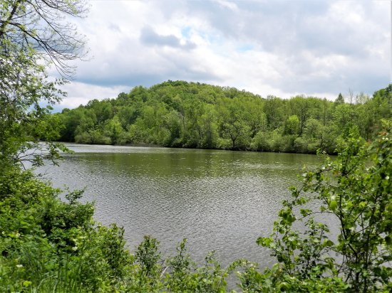 Macedon, NY: Along the canal trail between Lock 30 and Canadaquia rd