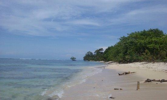 Under sea Panama: Paradis