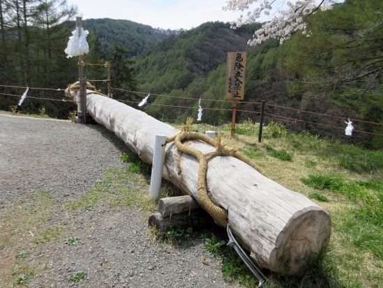 Shimosuwa-machi, Japón: 模擬御柱です。