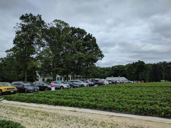 Waldorf, MD: Parking