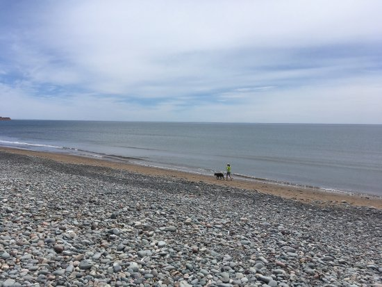 East Lawrencetown, Canada: photo6.jpg