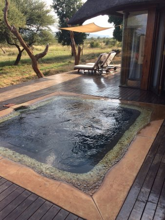 Madikwe Game Reserve, South Africa: deck and private pool
