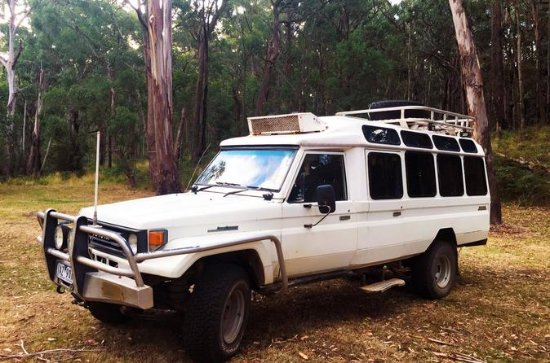 Private Tour: Wombat State Forest...