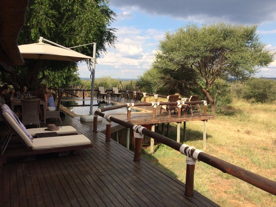 Madikwe Game Reserve, South Africa: Deck of adjoining couples suite where we had our breakfast after our Safari