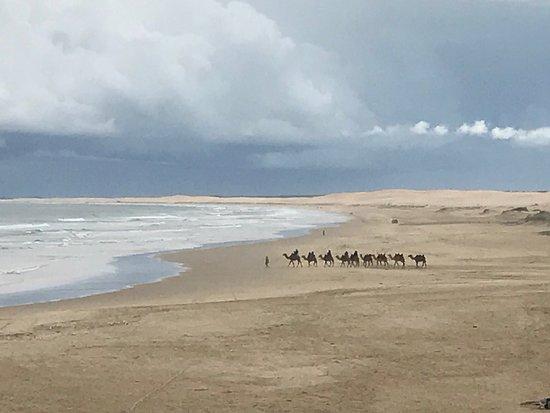 Anna Bay, Αυστραλία: photo1.jpg