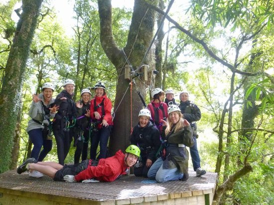 Rotorua Canopy Tours: We made it!