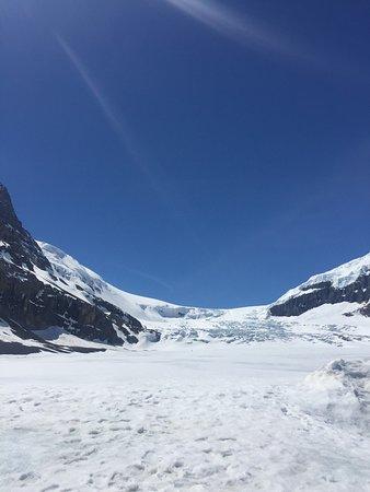 Columbia Icefield Glacier Adventure: photo2.jpg