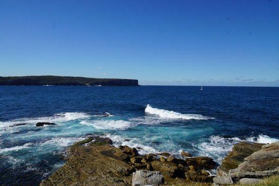 Watsons Bay, Australia: ノースヘッドが見える