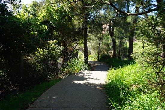 Watsons Bay, Australia: 歩きやすく整備されています