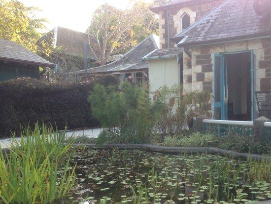 Dromana, Australia: Outdoor setting