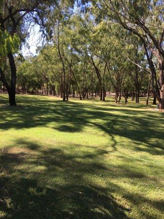 Emerald, Australia: photo3.jpg