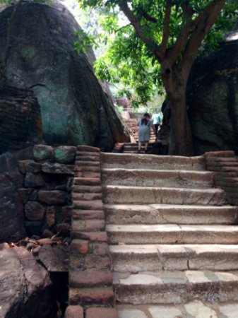 Citadel of Sigiriya - Lion Rock: Some of the 1202 steps you have to climb