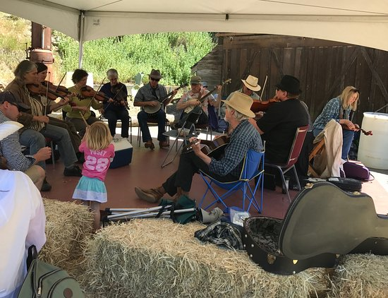 Walnut Creek, كاليفورنيا: The fiddlers at Borges Ranch Day, May 2017, kept everyone's toes tapping.