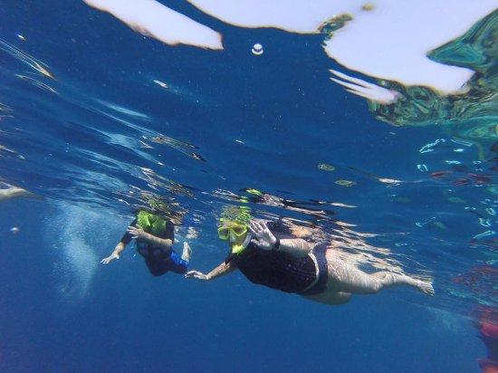 Maafushi Island: snorkeling adventure